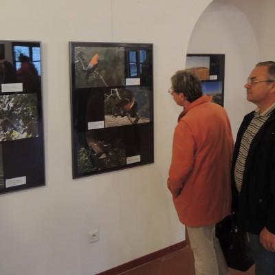 07 - na peruánské výstavě
