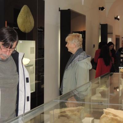 mineralogicka-expozice