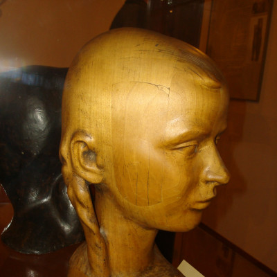 hlava dívky