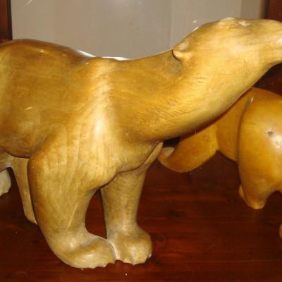 lední medvědi 2