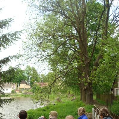na hrázi velkého rybníka