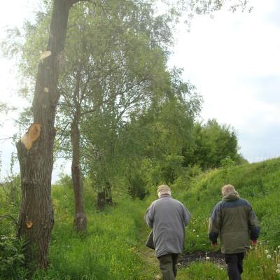 stará stonařovská cesta