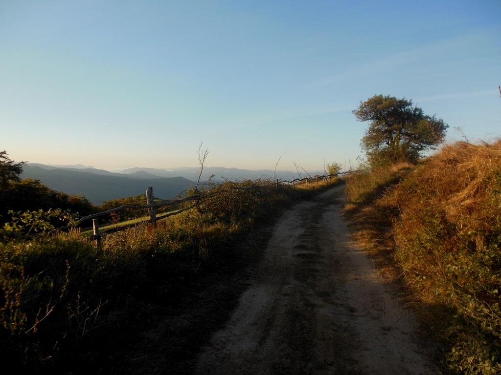 Ráno za Rovenskem