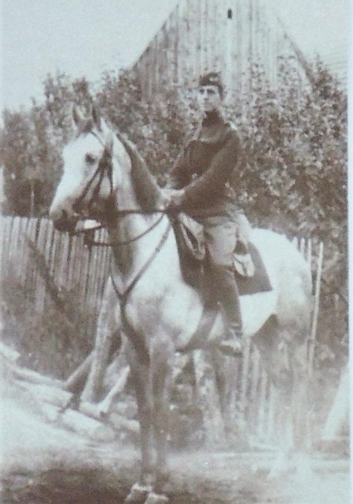 Lichka na koni Chytrák