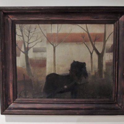 Koně z Bukové