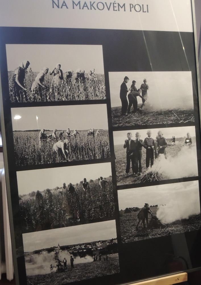 Panel fotografií